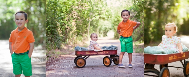 the woodlands family photography