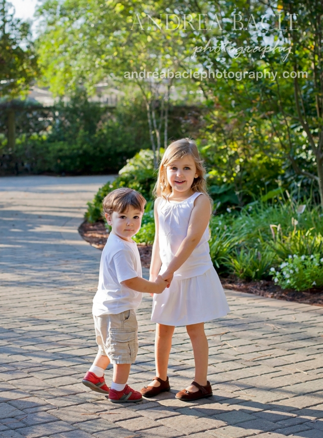 spring and the woodlands tx family photographer