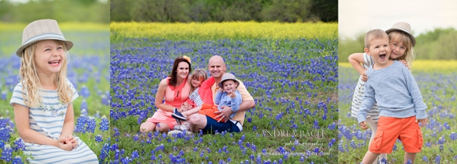 the woodlands tx bluebonnets family