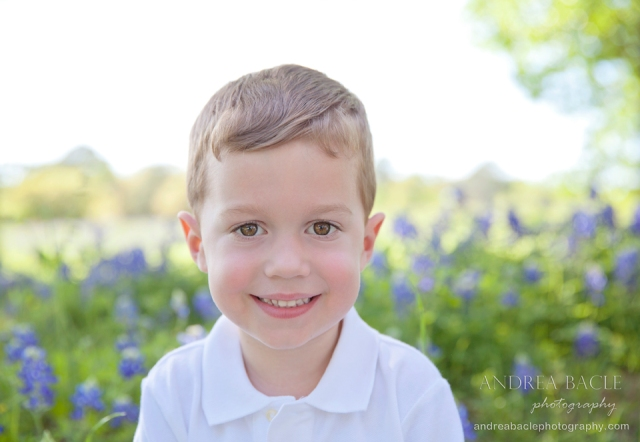 the woodlands houston tx bluebonnet photographer