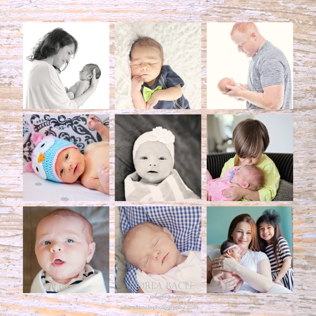 houston newborn photographer sampler