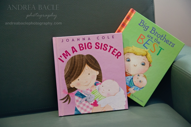 big sister big brother books woodlands twins photographer