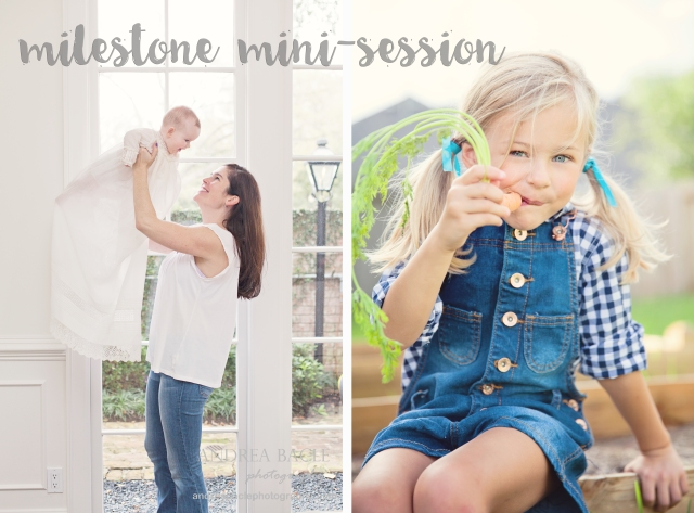 milestone mini-session