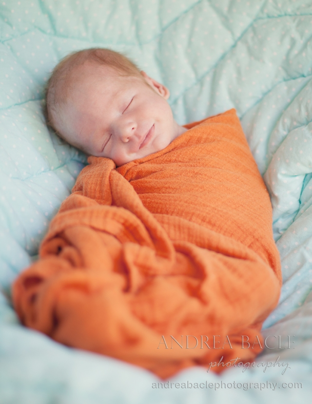 andrea bacle photography newborns