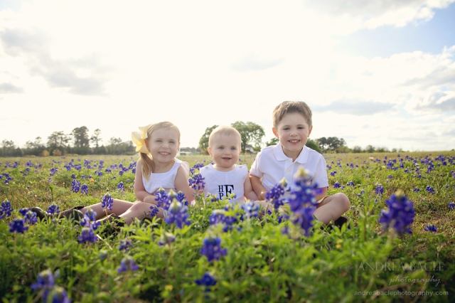twins and little brother bluebonnets montgomery tx