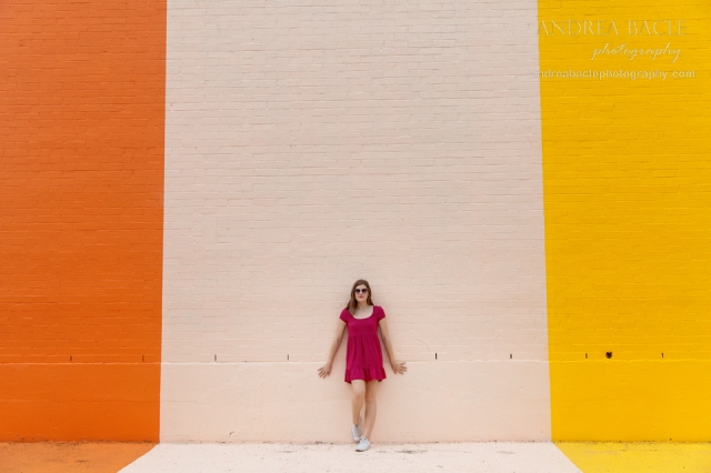 sugar and cloth color wall downtown houston senior portraits