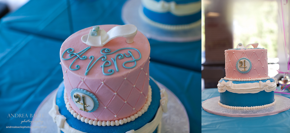 Blog Post Cinderella Birthday Cake Andrea Bacle Photography