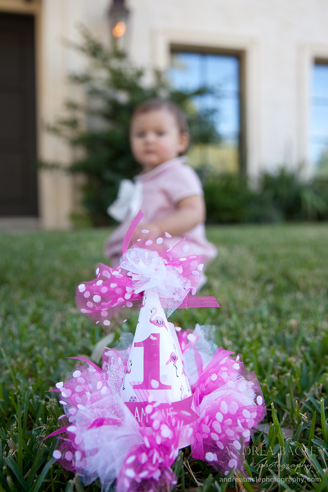 blog-post-one-year-old-flamingo-party-hat