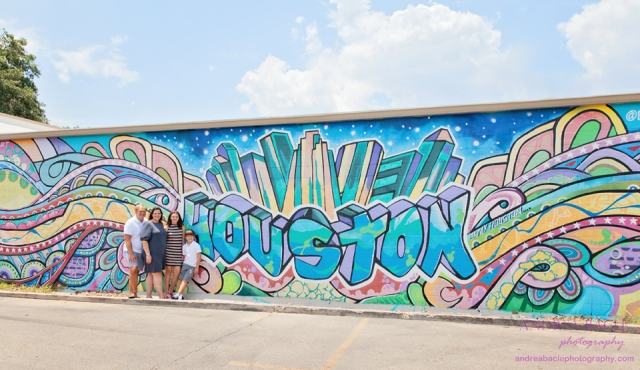 abp blog post houston murals full sun