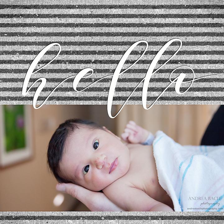 hello andrea bacle photography newborn hospital