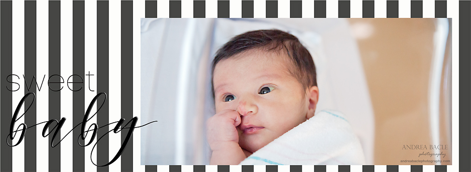 sweet baby newborn hospital sessions andrea bacle