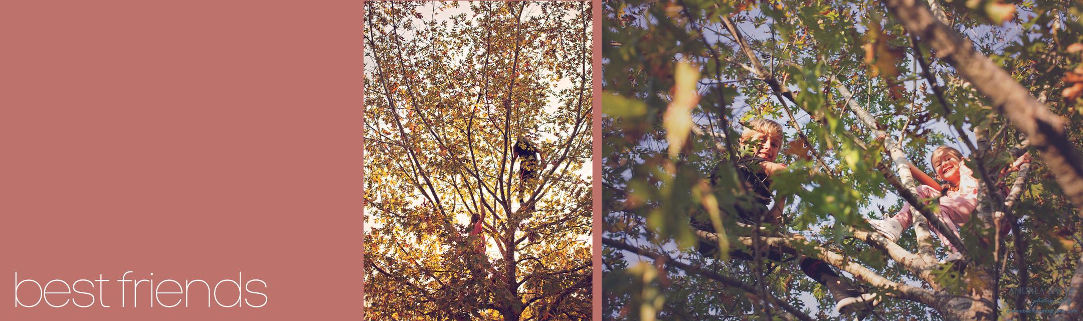 best friends tree climbers